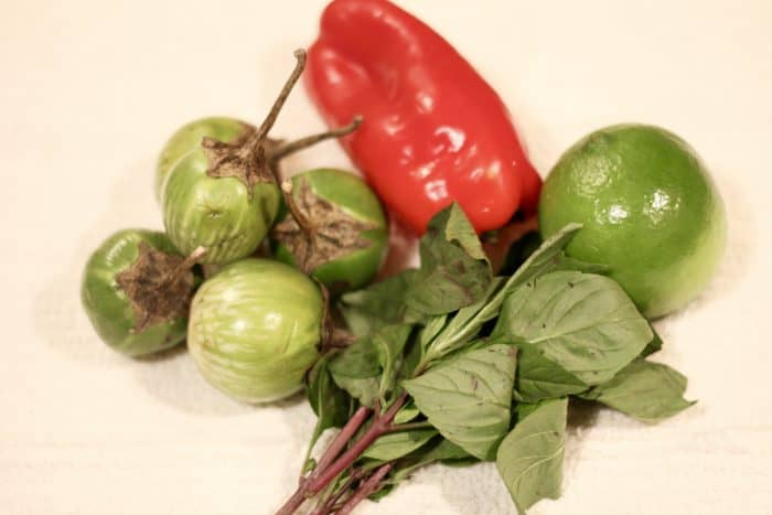 Fresh ingredients for thai green curry including 4-5 thai eggplant, red bell pepper, thai basil, and lime