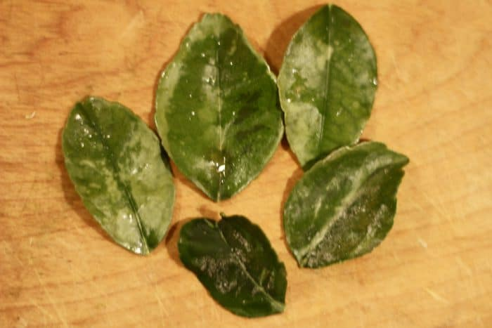 lime leaf ready to be cooked in thai green curry