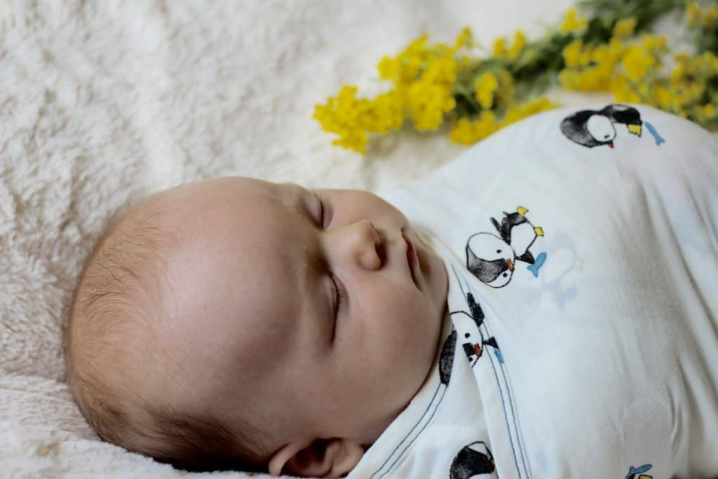 Tips for taking better newborn photos + Nested Bean swaddle giveaway!
