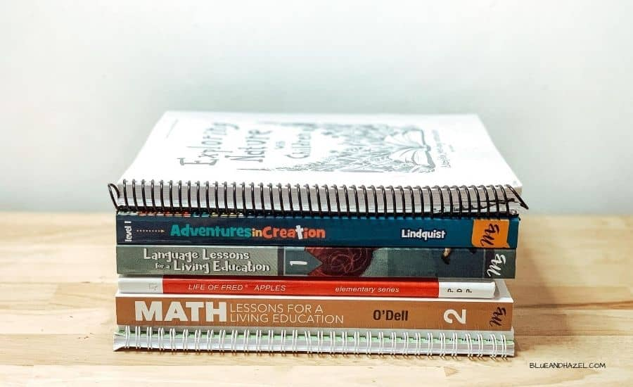 first grade homeschool curriculum choices