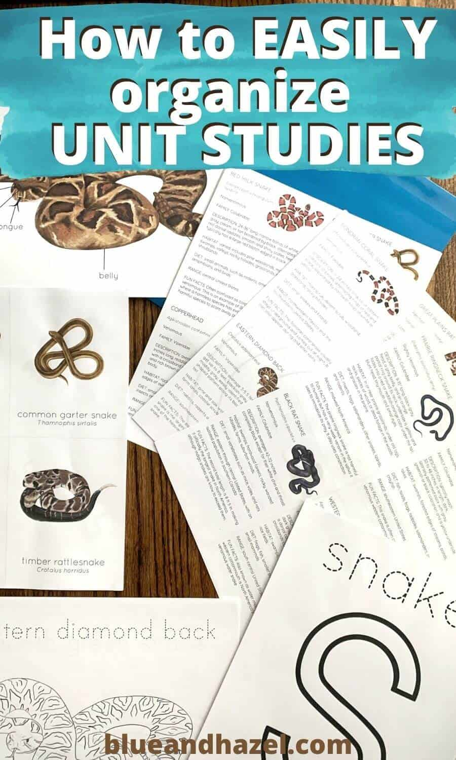 How to store and organize print outs for ANY unit study, like this mini snake unit study here by StephHathawayDesigns on Etsy.