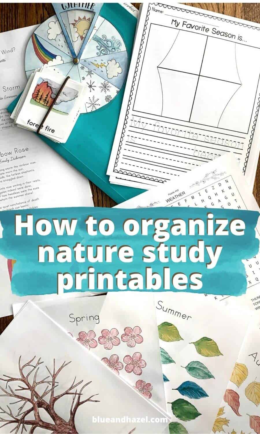 Weather Unit Printables organized using a filing system for nature study units