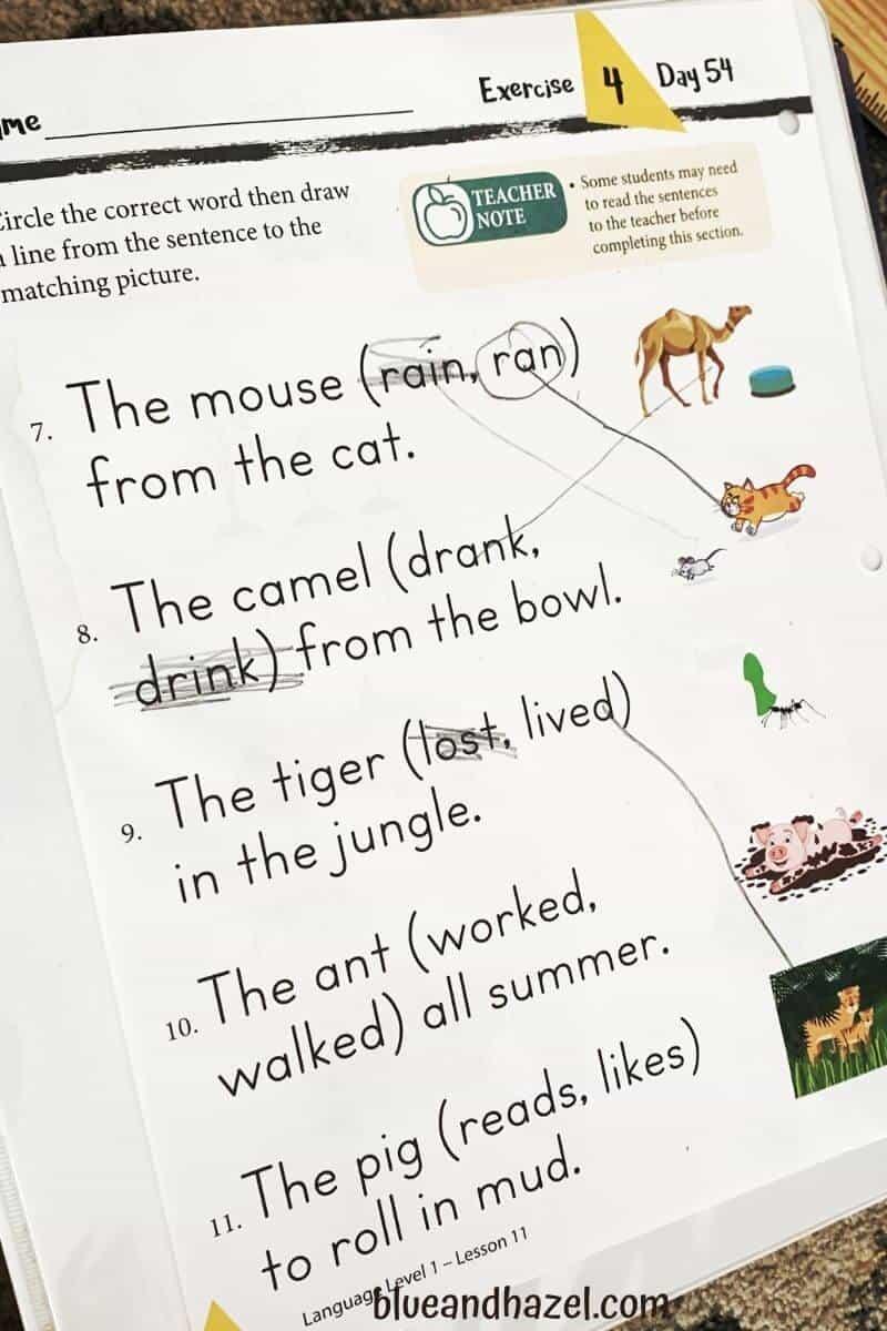 Worksheet from Masterbooks Level 1 Language Arts