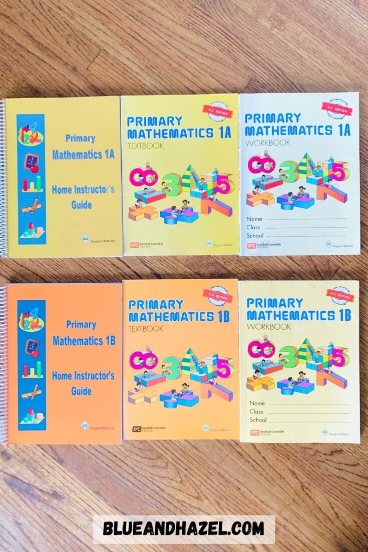 All 6 books needed for 1 year of Singapore Math Primary US Edition