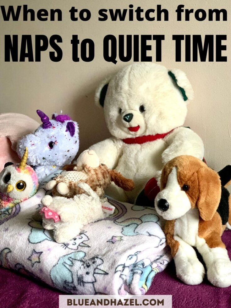 Stuffed animals and a unicorn blanket used for toddler nap time